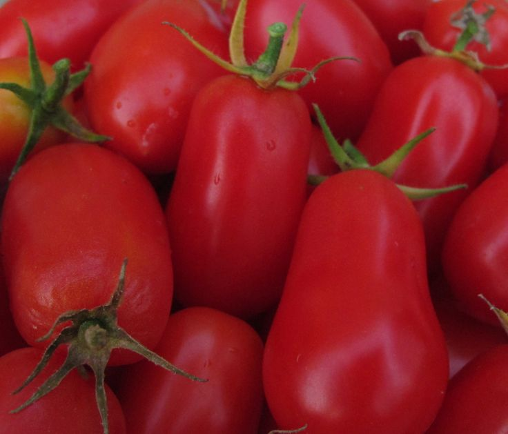 """Red Roma Tomatoes...   """"Red""""   Pinterest"""