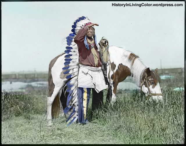 American Indian ChiefAmerican Indian Chief