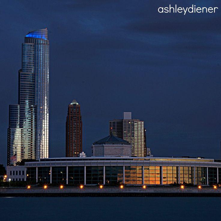 Shedd Aquarium Chicago Il