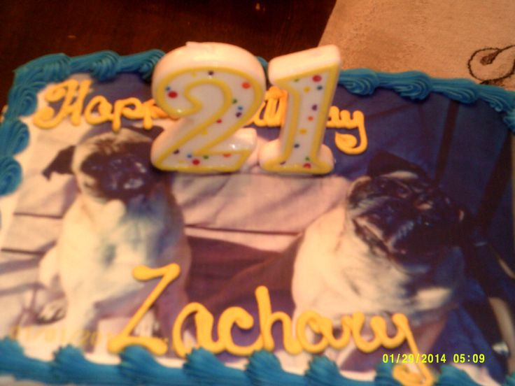 happy birthday Zachary | family and love | Pinterest