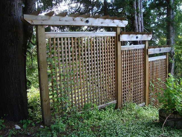 Pinterest garden privacy ideas photograph privacy screen for Garden screening ideas