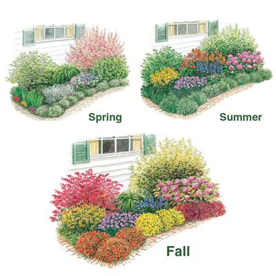 Three season of beauty garden garden ideas pinterest for Flower garden planner