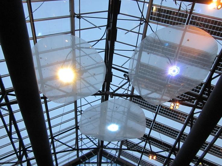 ceiling at de kaas, amsterdam