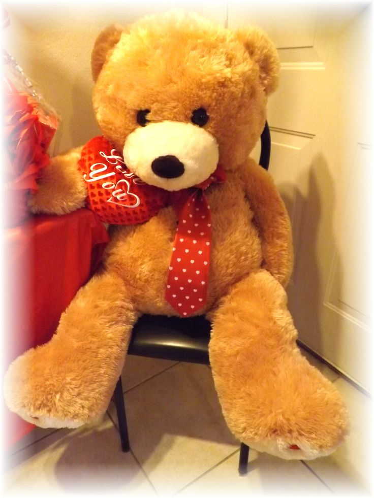 valentines day giant bear