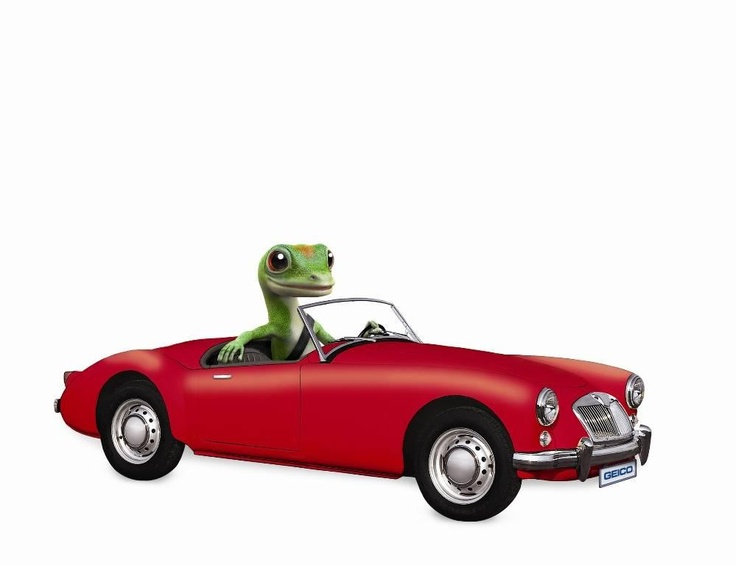 Cheap Car Insurance  Low Cost Auto Insurance  GEICO
