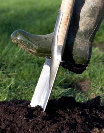 5 Frugal Fall Gardening Tips