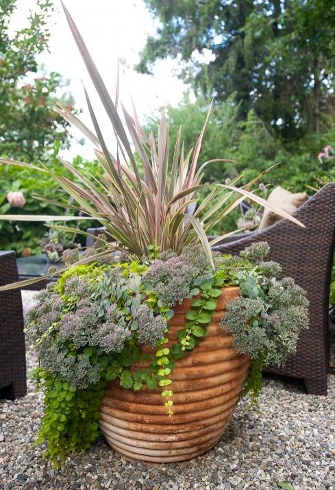 garden ideas in an english country garden pinterest