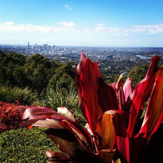 Mount Coot-tha | Brisbane - Sunny Queensland, Australia | Pinterest