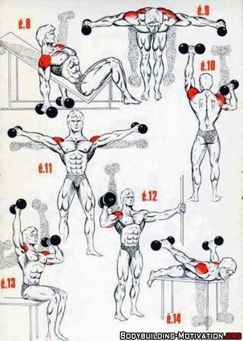 Personal trainer shoulder exercises