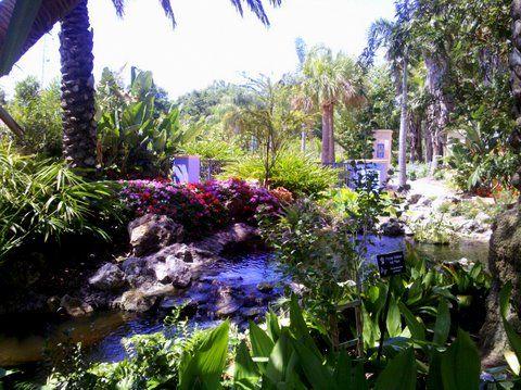 Florida Botanical Gardens Largo Fl Herb Garden Pinterest