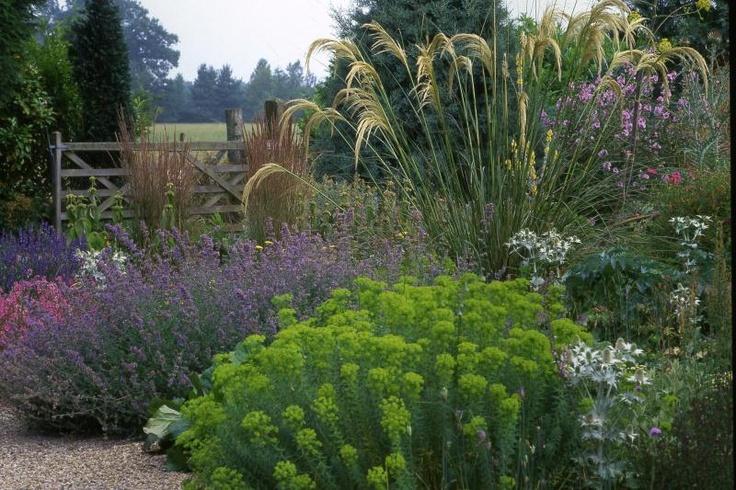 Beth Chatto Dry Garden Garden Pinterest