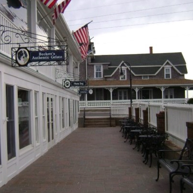 Hotels On Block Island That Take Dogs