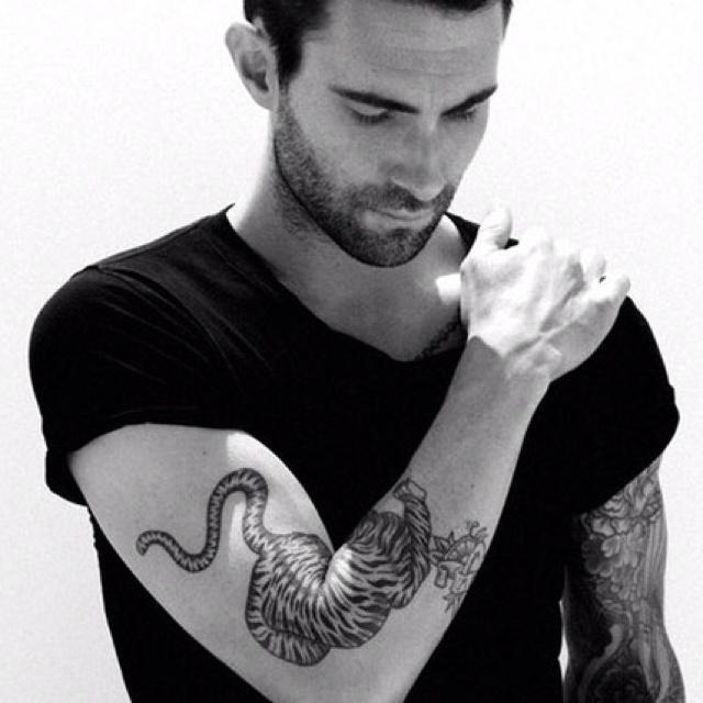 Adam Levine tiger tattoo...oohh yah!! | Classic Ink ...