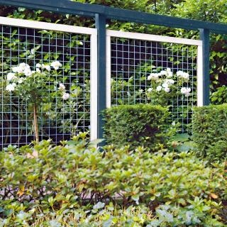 Painted wire mesh trellis garden ideas pinterest for Wire garden trellis designs