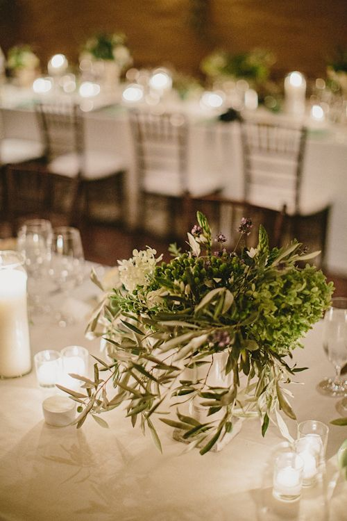 Olive branch centerpieces beautiful trees