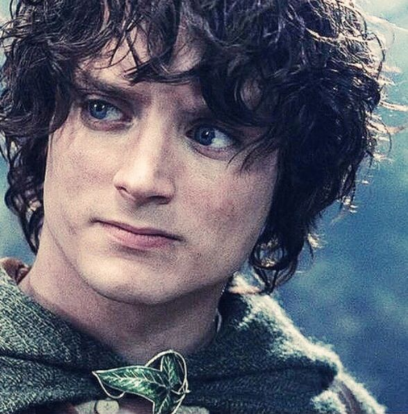 Frodo baggins lord of the rings for Pics of frodo baggins