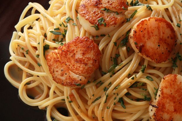 Seared Scallops with Lemon and Vodka | My Pasta Obsession | Pinterest