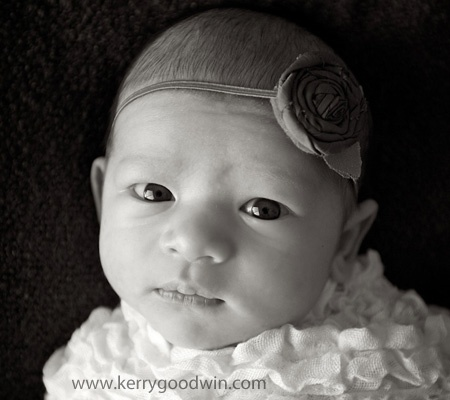 photo d avion canjet Lb