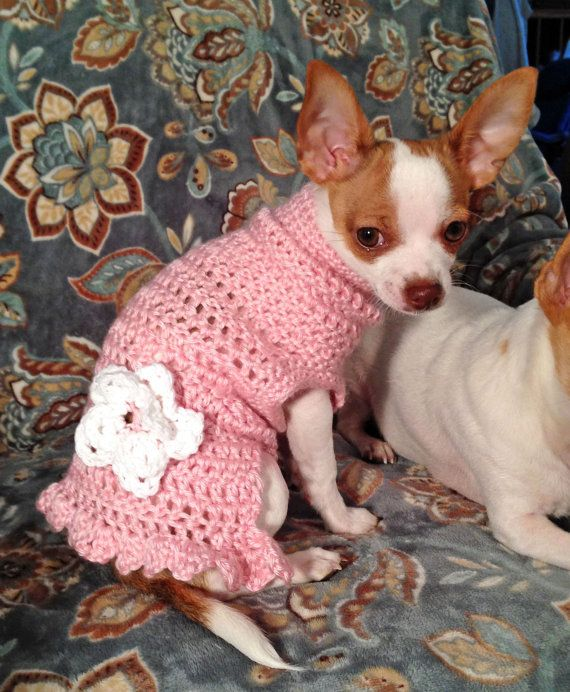 Handmade Crocheted Dog Sweater Sizes xxsxl by JennyStakerInspired, $20 ...