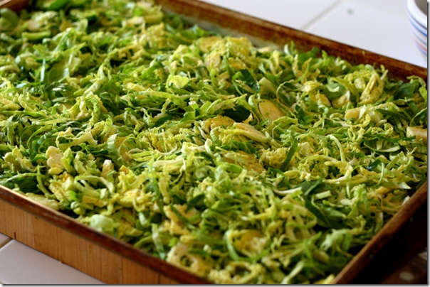 roasted shredded brussel sprouts | Yummy! | Pinterest