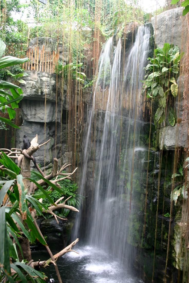 Hotels Near Omahas Henry Doorly Zoo In Omaha Ne Omahas