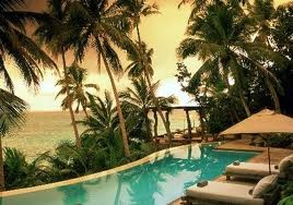 Pool under the palm trees