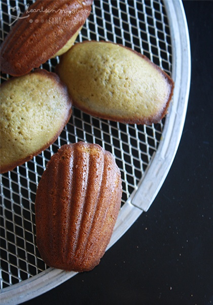 Green Tea Madeleines | Cookies | Pinterest