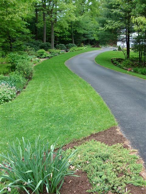 Long driveway deck landscaping patio ideas pinterest for Garden design ideas for driveways