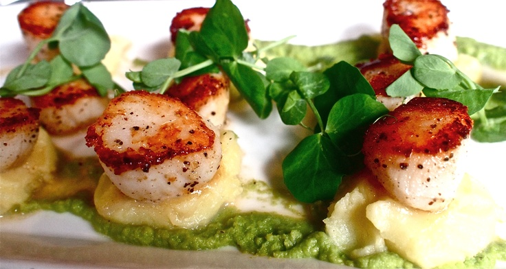 scallops with pea puree | Favorite Recipes | Pinterest