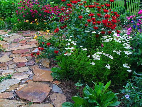 how to create a butterfly garden in florida