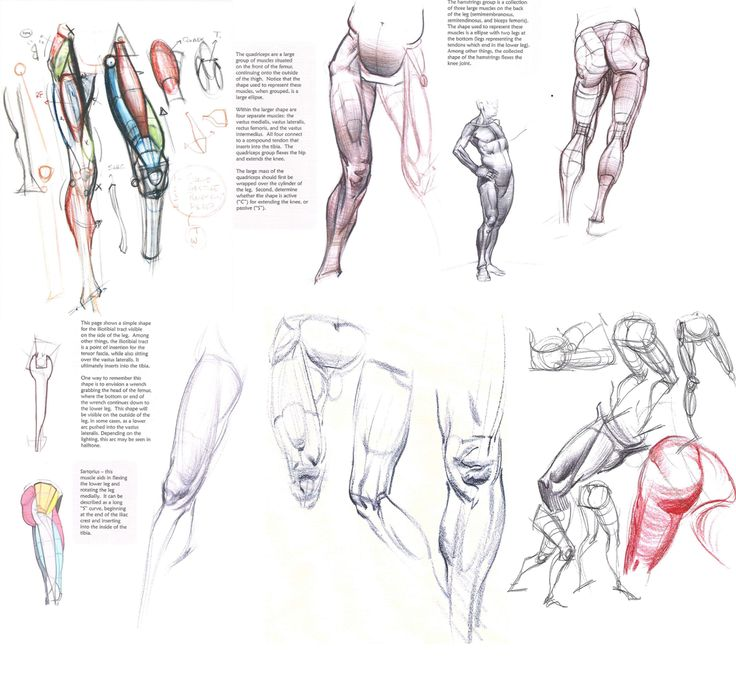 how to draw legs tumblr