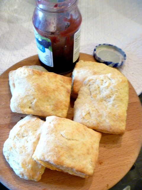 Old Fashioned Biscuits | Yummy Gummy | Pinterest