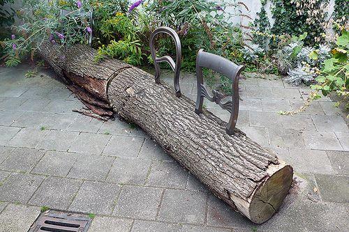 Tree stump bench beach house of my dreams pinterest for Tree trunk garden bench