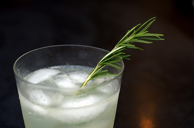 rosemary gin fizz | to drink, drinking, drank, have drunk | Pinterest