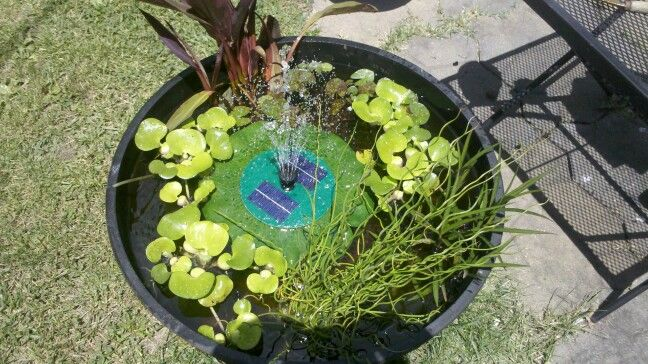 Do it yourself backyard pond ponds fountains pinterest for Do it yourself pond