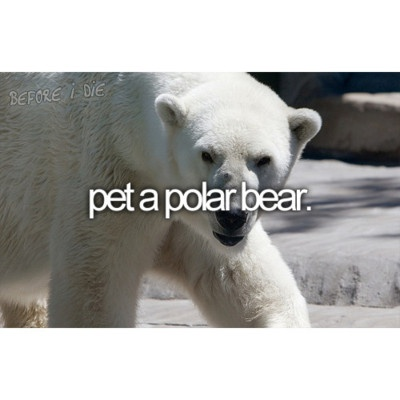 I'd love to do this before they all go extinct <3