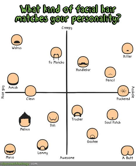 what is your personality like essay