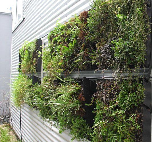Vertical Gardens Garden Wall Planters Pinterest