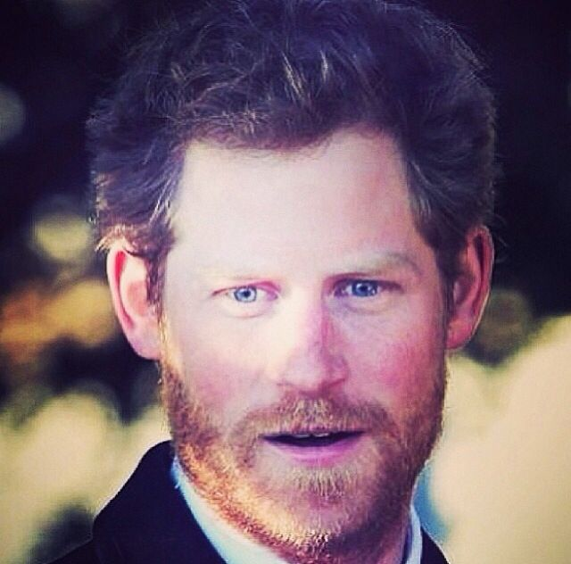 Prince Harry Of Wales-what A Fox
