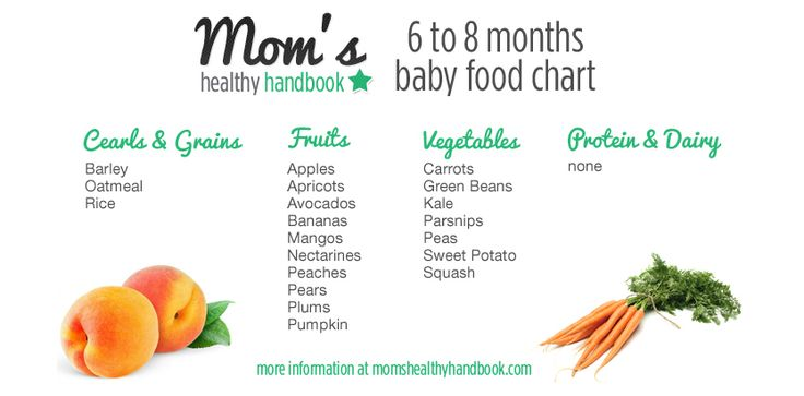 baby food chart by month pdf