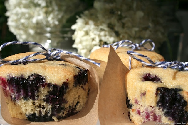 Blueberry Cakes | Foodgasms | Pinterest