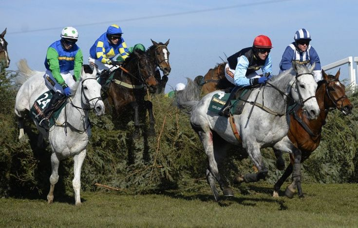 list of horses running in the grand national