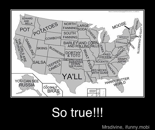 are these people stupid, budweiser for Colorado...really dont understand a lot of these