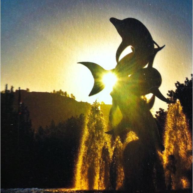 The Dolphins, Kelowna.