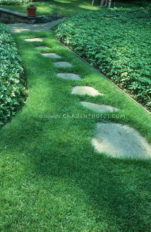 Stepping stones in small grassy area front yard garden for Stone path in grass