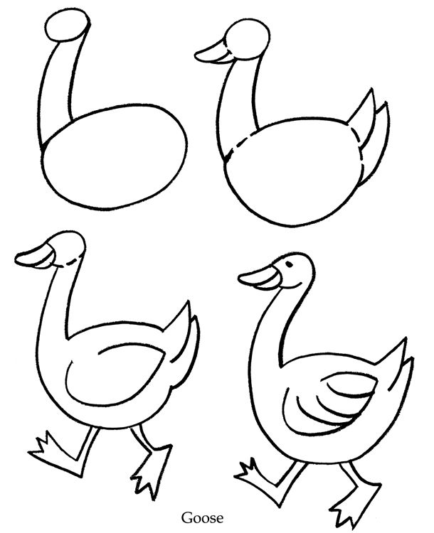 How to draw a simple bird