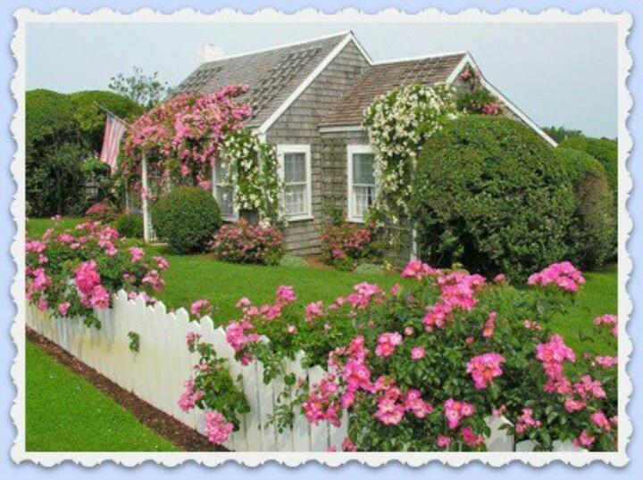 Cape Cod Cottages Tiny Homes Pinterest