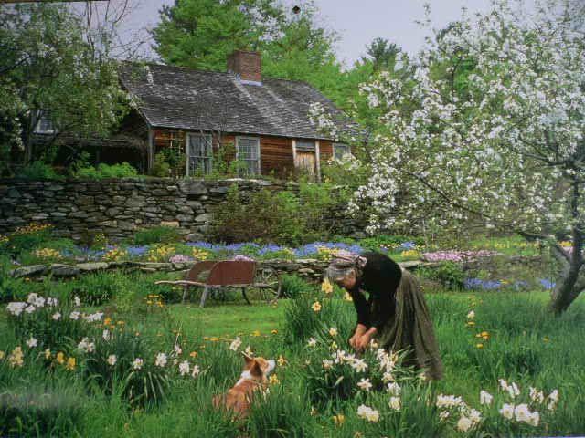 Tasha Tudor's Garden... http://www.sayama-f.co.jp/staffblog/2011/07/entry3723.php