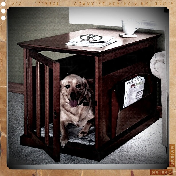Dog Crate End Table For The Home Pinterest