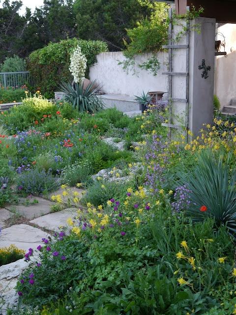 jenny stockers garden austin texas Gardens Pinterest
